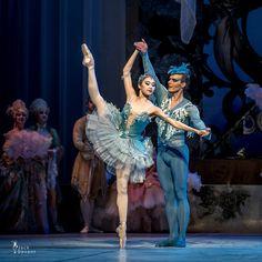 Bluebird Tuukka Piitulainen and Princess Florina Yimeng Sun