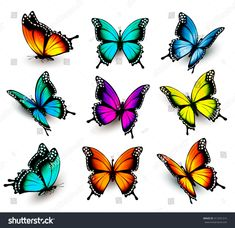 Collection of colorful butterflies, flying in different directions. Collection of colorful butterflies, flying in different directions. Colorful Butterfly Tattoo, Butterfly Drawing, Butterfly Tattoo Designs, Butterfly Pictures, Cartoon Butterfly, Butterfly Colors, Illustration Papillon, Butterfly Illustration, Illustration Vector
