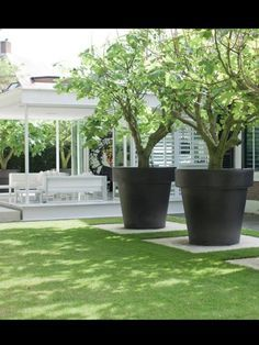 """*Nothing says """"pow"""" in a garden like oversized decor. The color and size of the pots are contemporary and a perfect addition to the garden."""