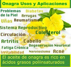 Aceite de Onagra Propiedades de la Prímula de la Noche - Club Salud Natural