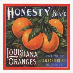 Louisiana Oranges