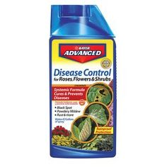 Bayer Advanced 701250 Disease Control for Rose, Flower and Shrubs Concentrate, Rose Of Sharon Bush, Yellow Twig Dogwood, Rose Diseases, Black Spot On Roses, Bayer Advanced, Powdery Mildew, Natural Garden, Insect Repellent, Garden Care