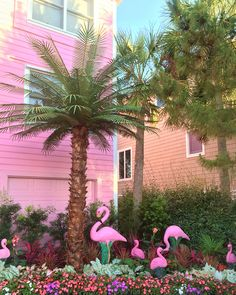 Flamingo House Isle of Palms