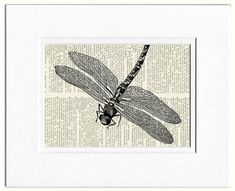 vintage dragonfly artwork V printed on old page from by FauxKiss