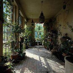 Morning freshness  #dcninteriors #dcngreen #conservatorygreenhouse