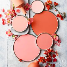 Take the guesswork out of choosing paint colors with these four easy steps, using color swatches as your guide. Coral Colour Palette, Coral Color, Colour Schemes, Colour Palettes, Dark Paint Colors, Interior Paint Colors, Warm Colors, Split Complementary Colors, Coral Walls