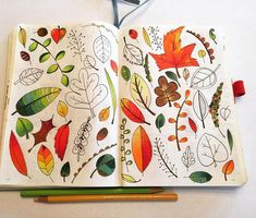 I worked some more on my November #drawingchallenge page. Just a few more leaves left to color and these pages will be complete.  #leuchtturm1917 #bulletjournaljunkies #bujo #bulletjournal #prismacolorcoloredpencils #micron #leaves #fall #prismacolorpencils