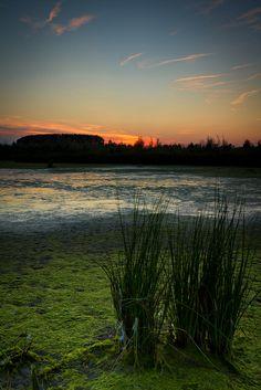 De Biesbosch in Netherlands | Stunning Places #Places