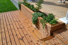 Garden Doors, Terrace Garden, Deck Design, Pergola, Planters, New Homes, Backyard, Cottage, Exterior