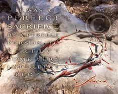 Perfect by mara bochart design, ShineLiving.org. Prophetic art. Available in frameable prints, notecards, canvases and more! Sword Of The Spirit, Christian Artwork, Prophetic Art, Crown Of Thorns, Note Cards, Im Not Perfect, Canvases, Prints, Simple