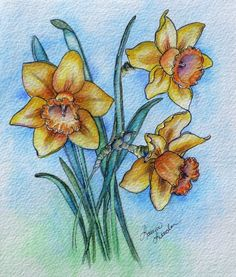 Golden Trumpets ~ Original Watercolour & Ink Daffodil Painting by artist Laura Leeder.  Spring Flowers, Golden Trumpets, Daffodils