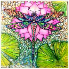 Dragonfly enchanted forest