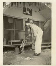 A dog named Ming begging for some Pepsi from a soldier friend of my grandfathers in post-war Guam.