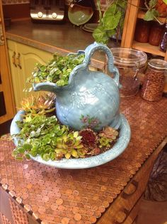 Had some great fun with some succulents and an old wash basin and jug.