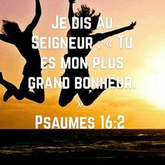 PSAUMES 16v2