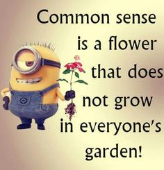 Common sense is a flower that does not grow in everybody's garden