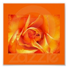 Poster-Color Therapy-Orange 5