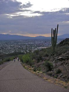 Tumamoc Hill with Tucson far below. Photo by Linda Valdez