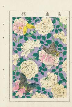 Japanese Drawings, Japanese Prints, Japanese Design, Japanese Art, Japan Illustration, Japanese Woodcut, Oriental Flowers, Asian Paints, Japanese Patterns