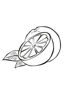 slice of fresh orange fruits coloring page kids play color - Slice Watermelon Coloring Page