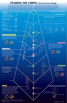 """Infographics' """"free diving"""" favorite pictures on waterflow on VisualizeUs"""
