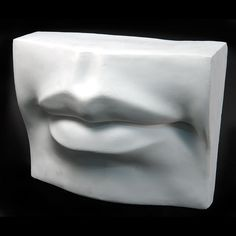 Plaster cast that can be used for an #anatomy study of the #lips