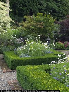 Walled garden edged with dogwoods and maples. Box beds with cosmos, nicotiana, roses, etc.