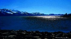Resurrection Bay, an ice free fjord in Seward , Alaska, glistens and glows in the light