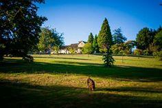 Ontspannen op vakantie met de hond? Dan gaat u natuurlijk naar Hondencamping La Soupèze in Frankrijk.