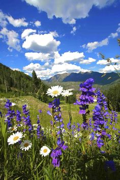 Beautiful Spring Day - Durango, Colorado by Visit Durango Beautiful World, Beautiful Places, Beautiful Pictures, Landscape Photography, Nature Photography, Jolie Photo, Spring Day, Rocky Mountains, Colorado Mountains