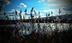 #sky #nature