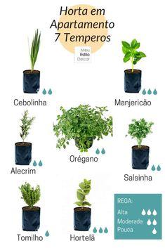 Apartment garden design kitchens ideas for 2019 Succulent Garden Diy Indoor, Eco Garden, Home Vegetable Garden, Garden Plants, Indoor Plants, Home And Garden, Garden Ideas, House Plants, Indoor Herbs