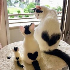 Feline Great: Classic Photos of Cats Being Cats - kittens Baby Animals Super Cute, Cute Baby Cats, Cute Little Animals, Cute Cats And Kittens, Cute Funny Animals, Kittens Cutest, Cute Dogs, Baby Kitty, Cute Kitty