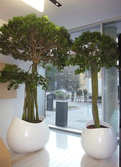 Reception White Planters to compliment a bright and spacious interior