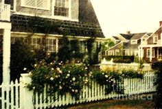 Nantucket Cottage (Desiree Paquette)