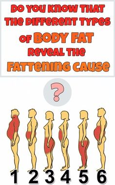 Do You Know That The Different Types Of Body Fat Reveal The Fattening Cause?