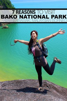 Thinking about Bako National Park? Here's 7 reasons to visit to easiest accessed park in Sarawak.