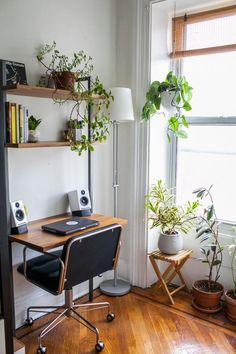 Small desk near a bright window with lots of surrounding plants