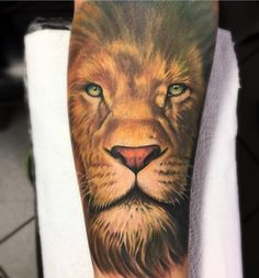 Tattoo Lion | Leão | Realismo Colorido | Tatuador Droman Marcos orçamentos via whatsap +55 41 9995-6010 -Curitiba -Brasil. Instagram @droman13tattoo Lion Forearm Tattoos, Forarm Tattoos, Leo Tattoos, Future Tattoos, Tattoo Ink, Sleeve Tattoos, Hannya Mask Tattoo, Sailor Jerry Tattoos, Lion Drawing