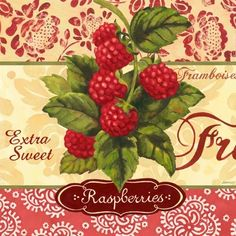Raspberries (Jennifer Brinley) Vintage Pictures, Vintage Images, Vintage Prints, Vintage Posters, Collages D'images, Fruit Of The Spirit, Picture Postcards, Fruit Art, Kitchen Wall Art
