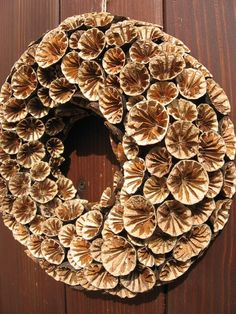 Thanksgiving Wreaths, Autumn Wreaths, Holiday Wreaths, Wreath Fall, Seashell Wreath, Seashell Crafts, Flower Crafts, Dried Flower Wreaths, Dried Flowers