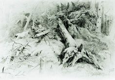 Бурелом 1867 Бумага.граф.карандаш