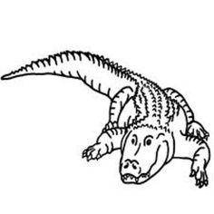 alligator coloring pages picture 15