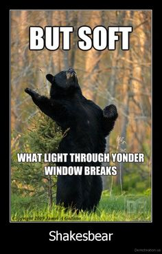 To bear or not to bear