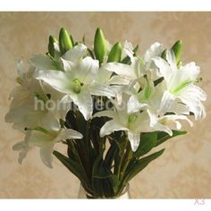 3pcs #6-head silk flowers lily #artificial plant for home #table arrangement whit, View more on the LINK: http://www.zeppy.io/product/gb/2/181999119214/