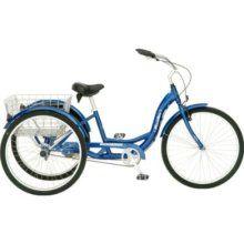 perfect bike for @Barb Sawyer
