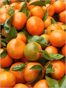 "The term ""Madarin orange"" applies to an entire group of citrus fruits."