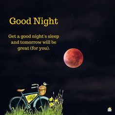 Good Night. Get a good night's sleep and tomorrow will be great (for you).