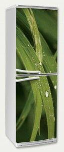 Droplets on grass sticker on fridge