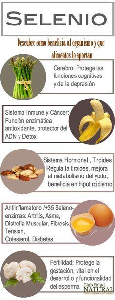 Los Oligoelementos la Micronutrición del Organismo – Club Salud Natural